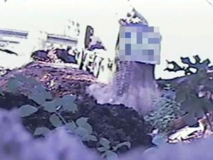 Un frame del video diffuso dai carabinieri forestali